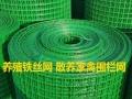供应铁丝网 钢丝网 建筑网片 电焊网片 铁丝网围栏