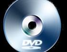 专业批发各类DVD影视光碟