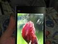 小米3手机出售