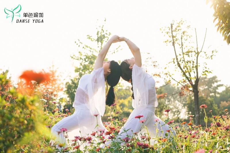 长沙单色舞蹈 岳麓区瑜伽课程 2个月快速减肥