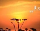 【端午特辑】6月20-22日蔚蓝大海之渔山岛梦幻3日游