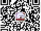 大熊犬舍-最专业的边境牧羊犬繁殖