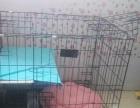 99成新宠物猫专用猫笼 双层可折叠 98元