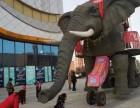 淮安哪里有租赁机械大象 机械大象租赁多少钱