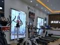 美国优沃健身车B500