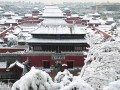办理北京售电公司在那个单位审批