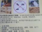 中山白蚁防治、除虫灭鼠、蚊子、蟑螂、一次灭杀