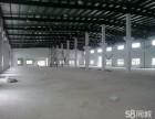 黄金地段高12米钢结构全新厂房招租可分租