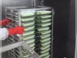 西安卤肉熟食真空预冷机 厂家报价