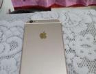出售自用iPhone6 plus,金色需要的快来