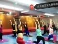 方庄成人瑜伽班—减肥塑形瑜伽班开课啦