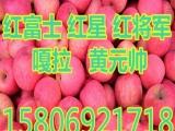 山东苹果批发价格,,,,,,,3Q