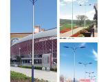 LED双向单双向7米路灯 优质LED路灯 精品LED道路灯 厂家