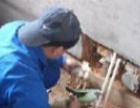 A湖州雨水管道安装 下水管道安装 管道防腐改造