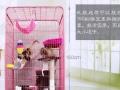 猫爬架 四川绵阳自提,50元