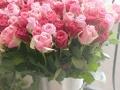 广州鲜花速递丨玫瑰社