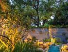 成都花園裝修庭院裝修設計景觀設計植物造景