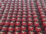 武汉蔡甸开发区灭火器批发,年检维修换粉加压上门服务
