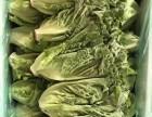深圳食堂餐厅新鲜蔬菜配送