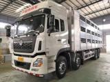 武汉畜禽运输车正常运输吗