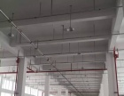 平阳滨海万洋工业区 建筑11000平方 全新厂房