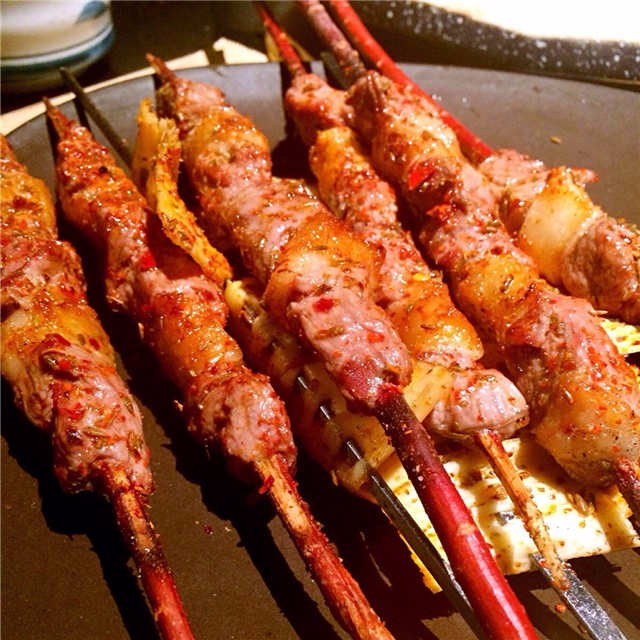 红柳签子 红柳烤肉签子 红柳木烤肉签子 红柳枝烧烤签子 包邮