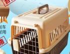 全新美士幼猫粮+罐头+松木猫砂+双层猫砂盆+猫食盆
