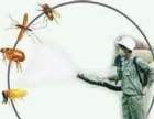 家庭灭蟑螂、灭老鼠、灭跳蚤灭蚂蚁包年签服务正规发票