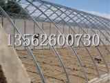 天河温室专业承建连栋阳光板温室,连栋薄膜温室建设价格
