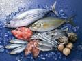海产品进口清关最快多长时间