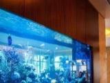 西安鱼缸海鲜池定制