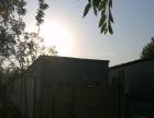 大王庄村,交通便利 厂房 350平米