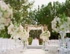 婚礼司仪、豪华婚车、摄影摄像、舞蹈歌手、舞台灯光等