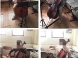 北京石景山門頭溝一對一大提琴培訓
