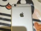 银色IPHONE6港版4.7寸64G出手