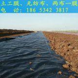 山东HDPE土工膜每平米价格