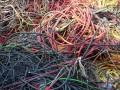 江门废旧电缆回收价格