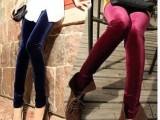 冬季韩国进口金丝绒百搭 新款加厚加绒打底裤保暖裤子厂家批发