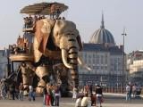 南阳机械大象租赁 高度仿真大象租赁