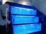 广州大型亚克力鱼缸定做的公司做的比较好的有几家公司-洋清水族