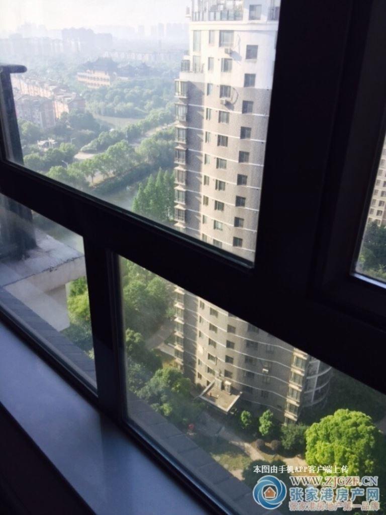 清水湾19楼50平方 朝南公寓 设施齐全 拎包入住 21清水湾