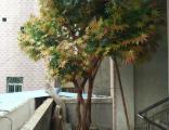 莱芜仿真树生产厂家 景界园艺