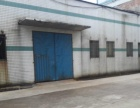星沙经开区700平米标准厂房出租