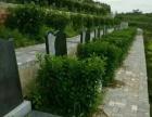 钦州市公墓陵园销售