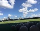 高尔夫球体验课 仅198元 长宁 杨浦 浦东等五家场地通用