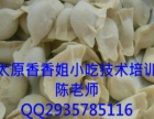 水饺的做法临汾小吃培训