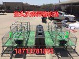 厂家直销 母猪产床 猪用定位栏 沃森养殖设备有限公司