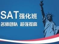 深圳SAT培训,出国英语培训VIP定制课程名师教学