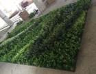 北京仿真立体墙植物墙厂家
