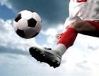 枣庄专业级教练足球培训